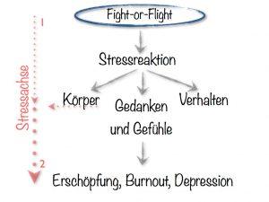 vereinfachtes stressmodell stressreaktion körper gedanken gefühle verhalten burnout drepression